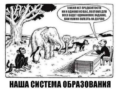 Проблемы образования